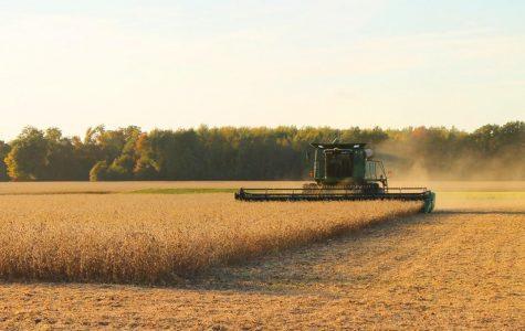 Farm experiences grow stronger students