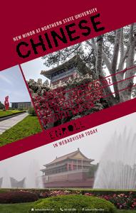 Chinese Minor