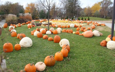 Local Foods Education Center donates over 5,000 pumpkins