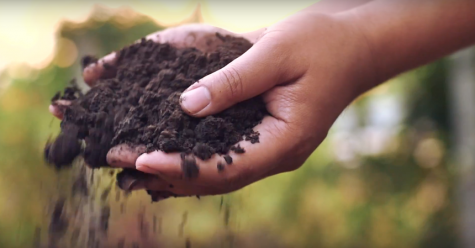 Digging up knowledge: Soil research supports no-till farming