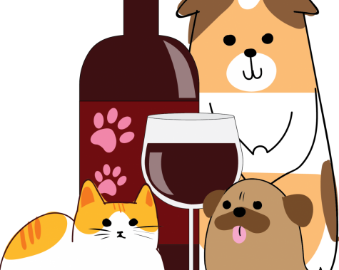Humane Society's 'Paws for Wine' doubles as date night, charity event
